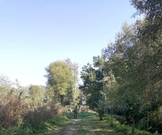 Comezan os traballos de limpeza na beira do río Maceiras