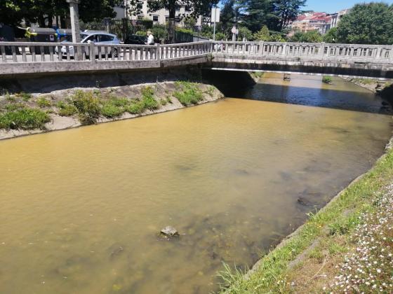 Augas Turbias no río Alvedosa