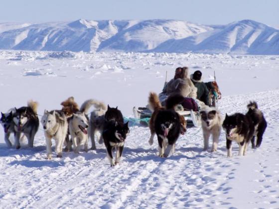 """O CEIP de Cedeira, en colaboración co Concello de Redondela, organiza a charla: """"Los inuit. Cazadores del Gran Norte"""""""