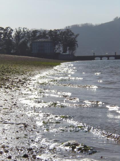 Ecoloxistas en Acción analizan a situación das Praias de Redondela