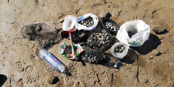 Incautación en la playa de Arealonga por marisqueo ilegal