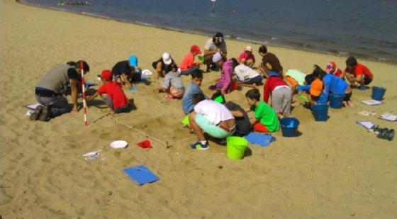 Arqueoloxía na praia, unha actividade para nen@s