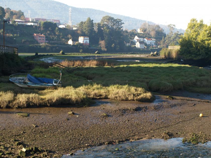 Actuaciones sobre el río Alvedosa y el río Pexegueiro