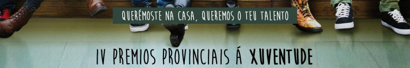 IV Premios Provinciais á Xuventude.