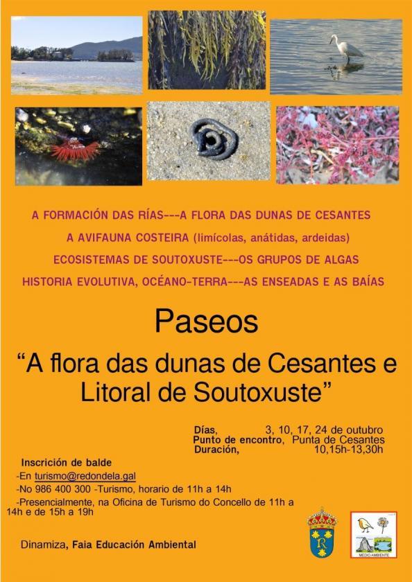 Nuevas Jornadas en la Red Natura 2000. Paseos por la biodiversidad de la ensenada