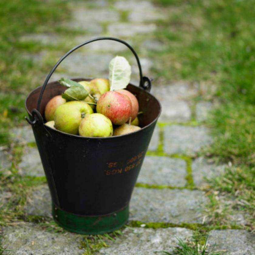 Charlas de sensibilización y formación sobre el compostaje individual/familiar